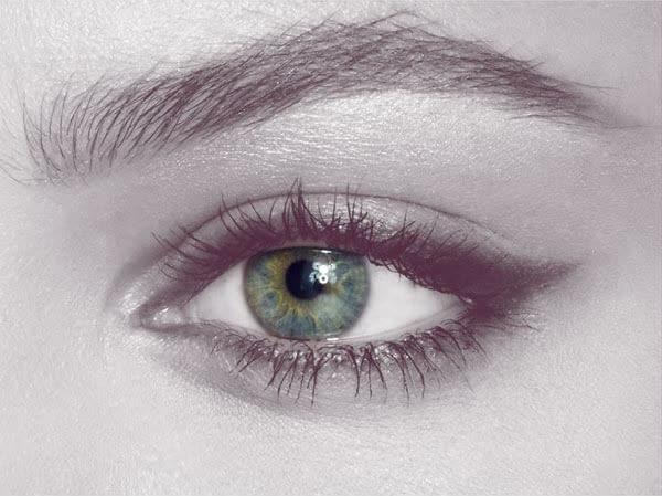 Enchanting Eyes & Brilliant Brows