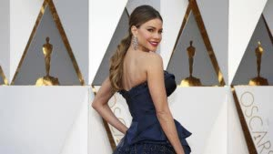 Presenter Sofia Vergara poses as she arrives at the 88th Academy Awards in Hollywood, California February 28, 2016. REUTERS/Lucy Nicholson